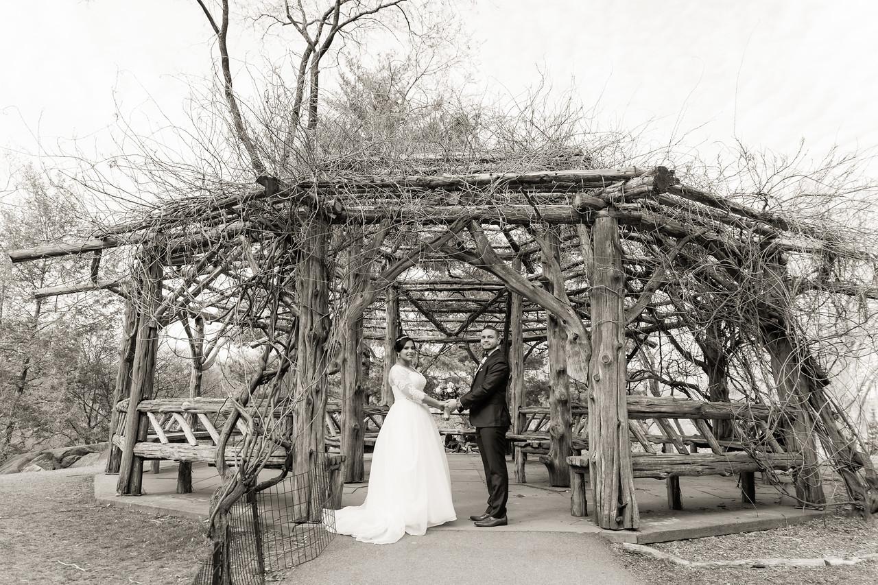 Central Park Wedding - Ariel e Idelina-191