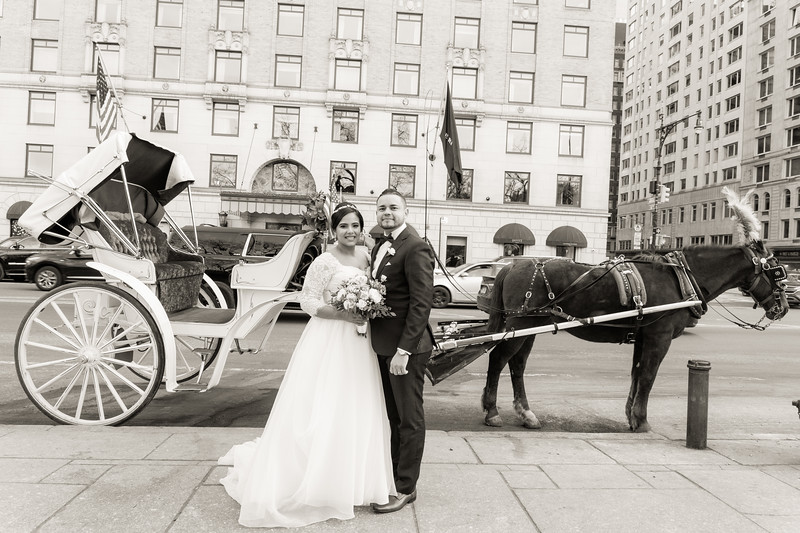 Central Park Wedding - Ariel e Idelina-221