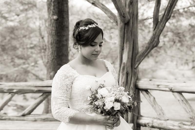 Central Park Wedding - Ariel e Idelina-154