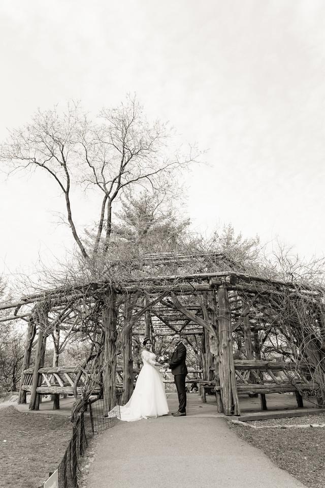 Central Park Wedding - Ariel e Idelina-197