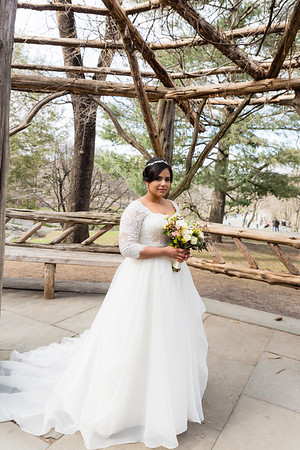 Central Park Wedding - Ariel e Idelina-161