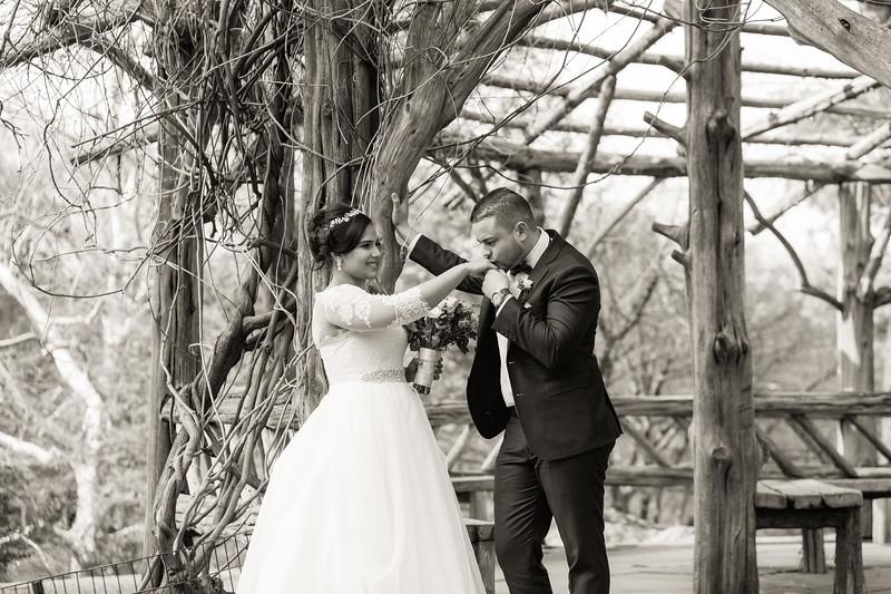 Central Park Wedding - Ariel e Idelina-189