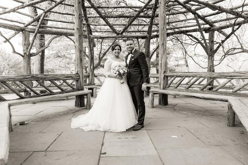 Central Park Wedding - Ariel e Idelina-176