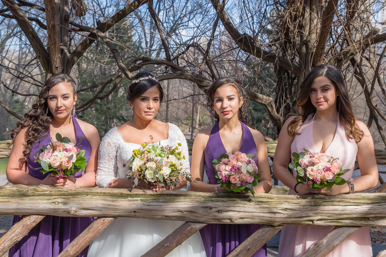 Central Park Wedding - Ariel e Idelina-86