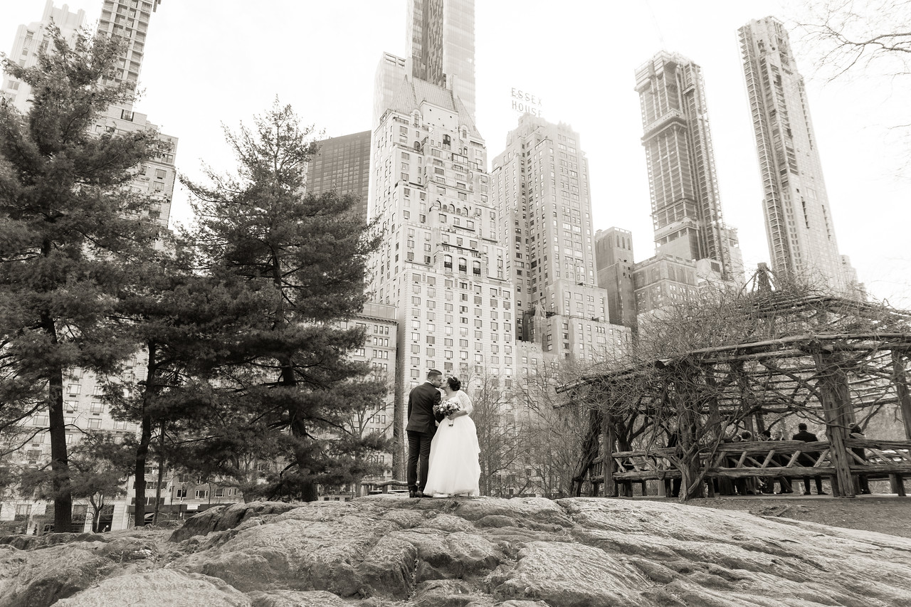 Central Park Wedding - Ariel e Idelina-213
