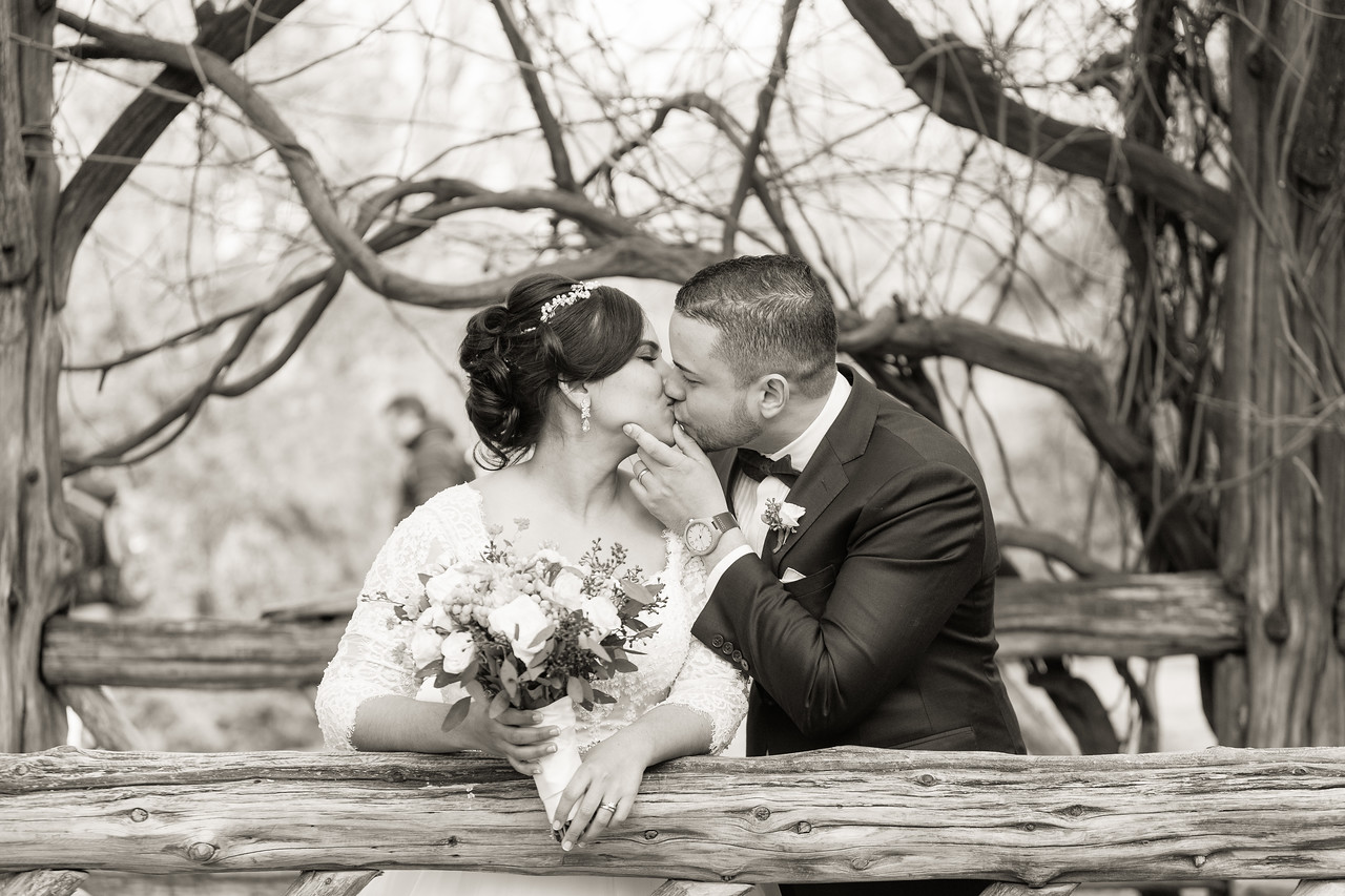 Central Park Wedding - Ariel e Idelina-182
