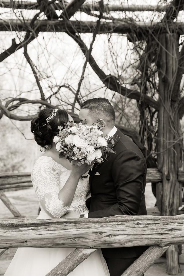 Central Park Wedding - Ariel e Idelina-185
