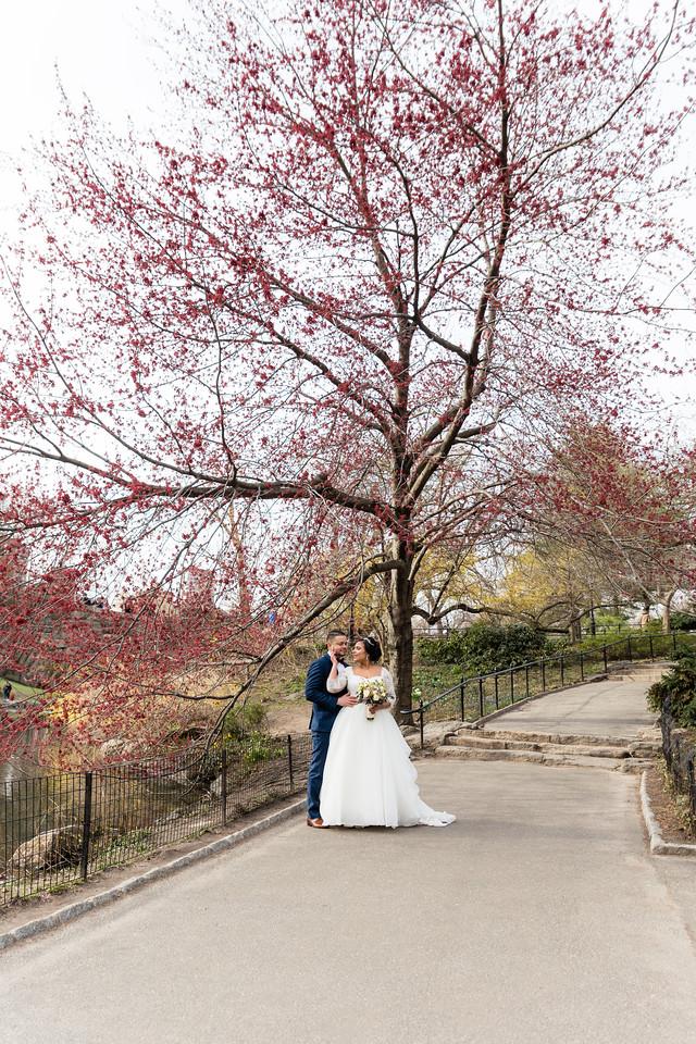 Central Park Wedding - Ariel e Idelina-242