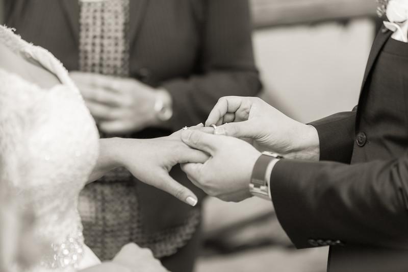 Central Park Wedding - Ariel e Idelina-39