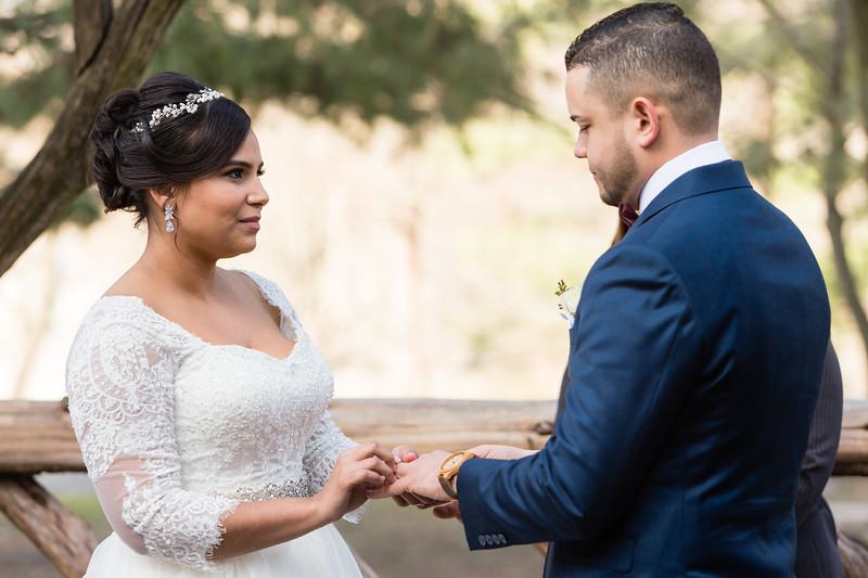 Central Park Wedding - Ariel e Idelina-48