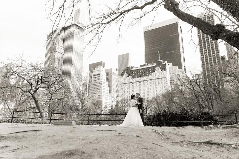 Central Park Wedding - Ariel e Idelina-246