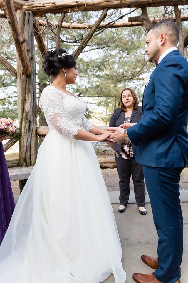Central Park Wedding - Ariel e Idelina-50