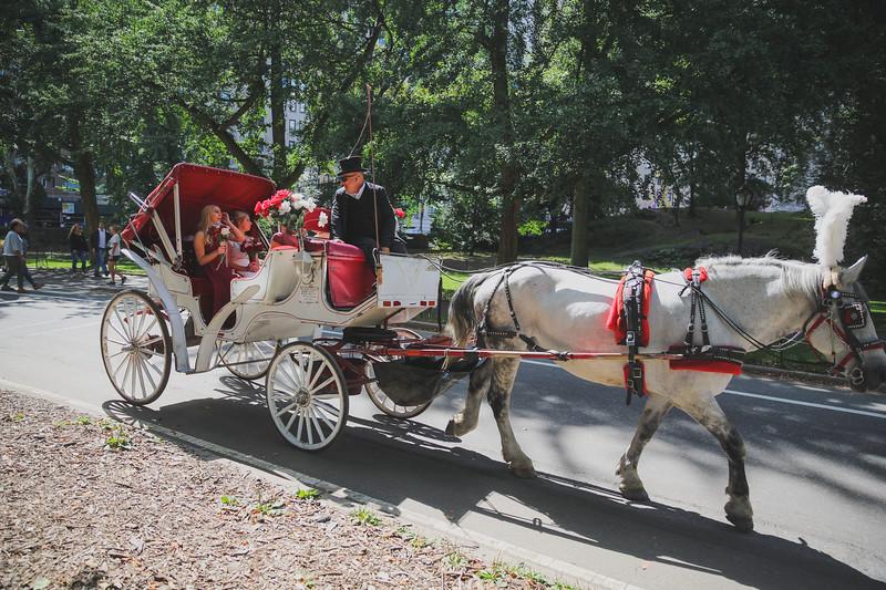 Central Park Wedding - Ben & Samantha-7