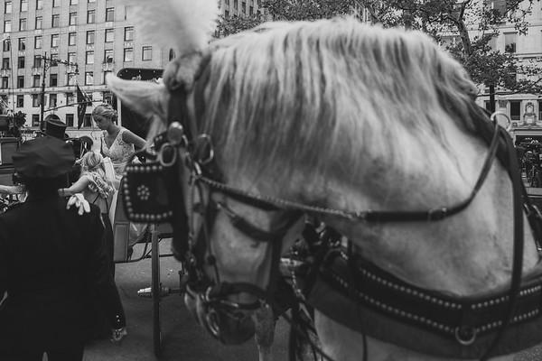 Central Park Wedding - Ben & Samantha-16