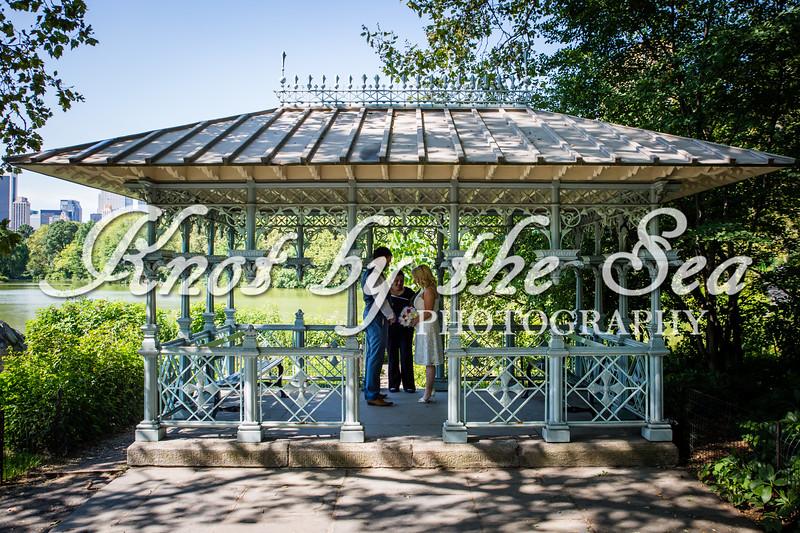 Central Park Wedding - Carrie & Ryan-3