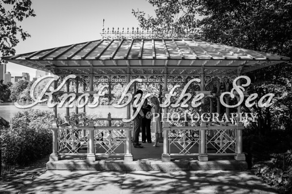 Central Park Wedding - Carrie & Ryan-4