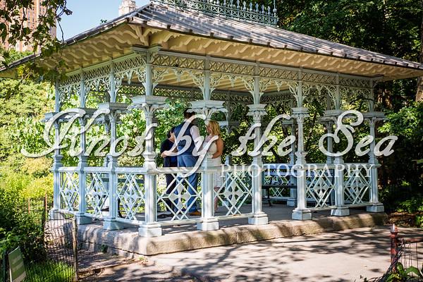 Central Park Wedding - Carrie & Ryan-9