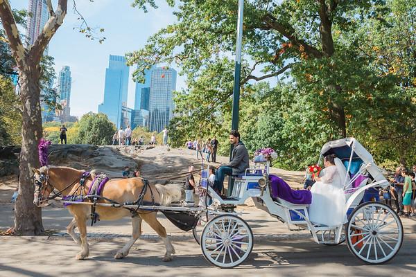 Central Park Wedding - David & Kim-13