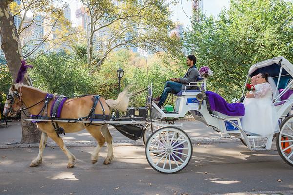 Central Park Wedding - David & Kim-16