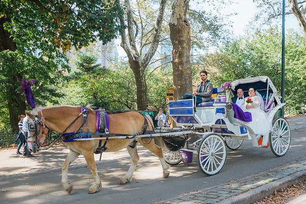 Central Park Wedding - David & Kim-17