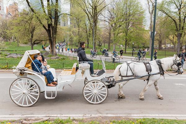 Central Park Wedding - Diana & Allen (24)