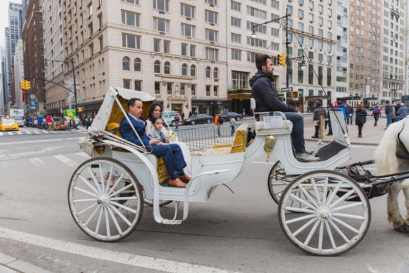 Central Park Wedding - Diana & Allen (13)