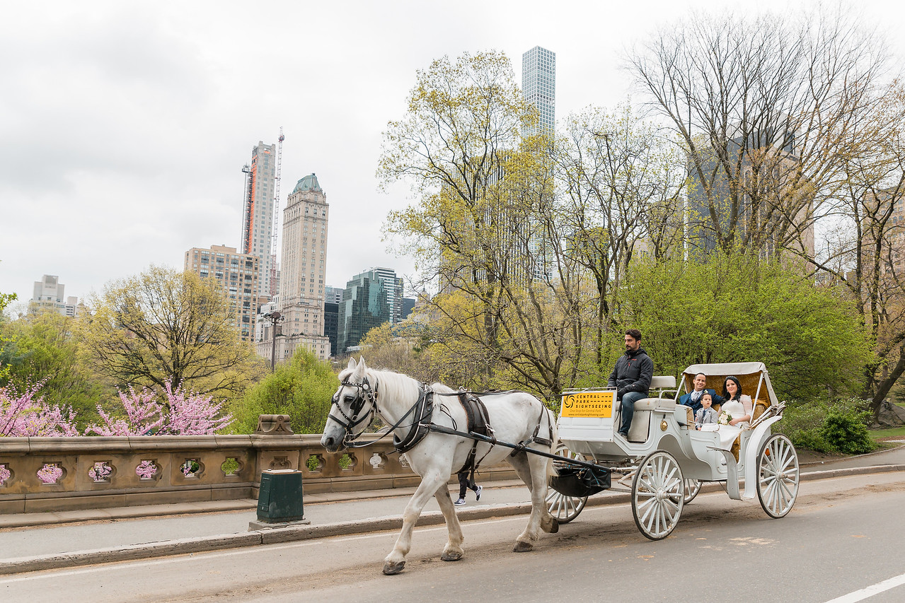 Central Park Wedding - Diana & Allen (26)