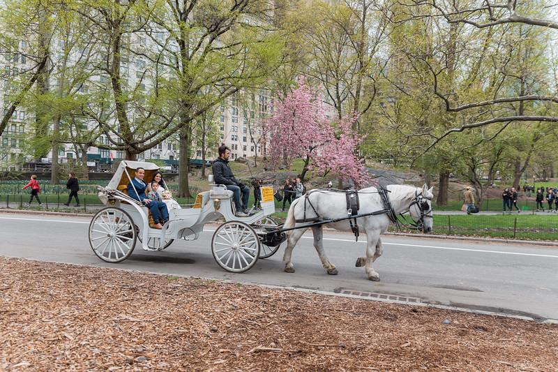 Central Park Wedding - Diana & Allen (21)