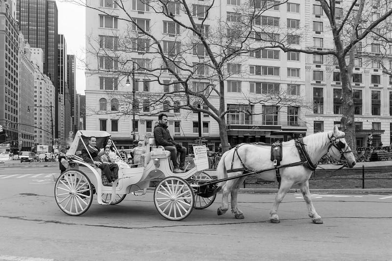Central Park Wedding - Diana & Allen (16)