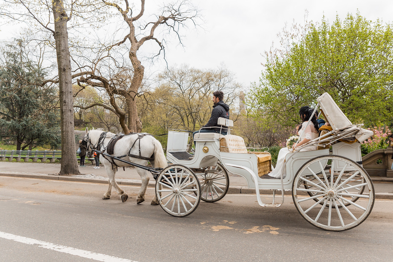 Central Park Wedding - Diana & Allen (29)