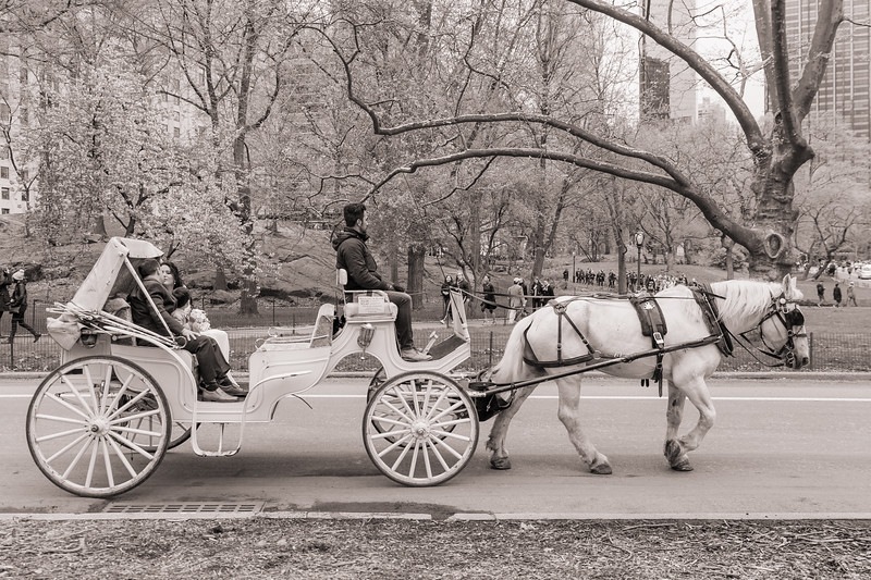 Central Park Wedding - Diana & Allen (22)