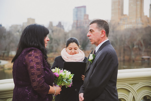 Central Park Wedding - Diane & Michael-13