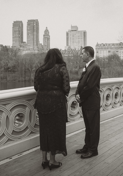 Central Park Wedding - Diane & Michael-3