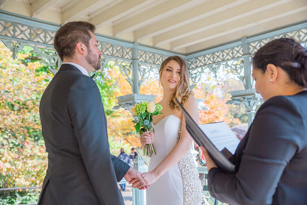 Central Park Wedding - Ian & Chelsie-15
