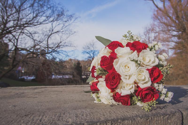 Central Park Wedding - Jenna & Kieren-30