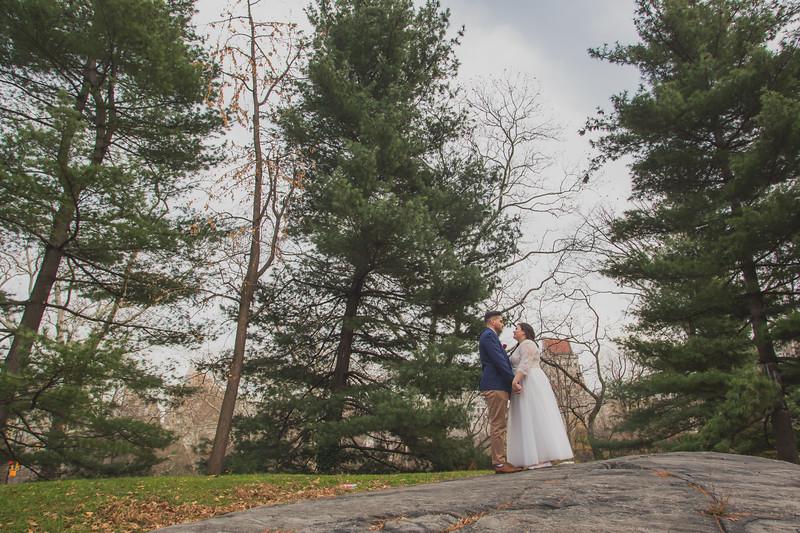 Central Park Wedding - Jenna & Kieren-97
