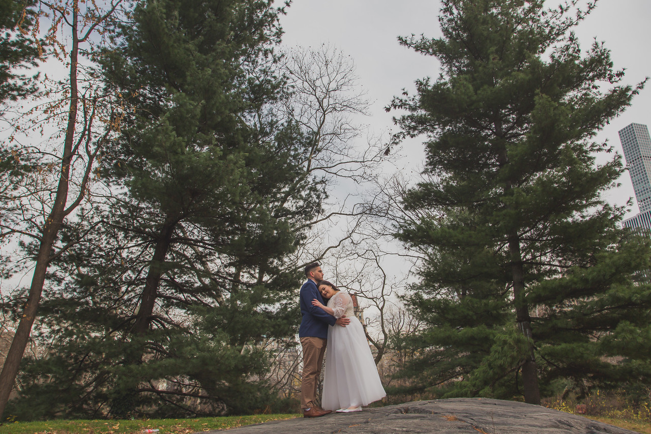 Central Park Wedding - Jenna & Kieren-99