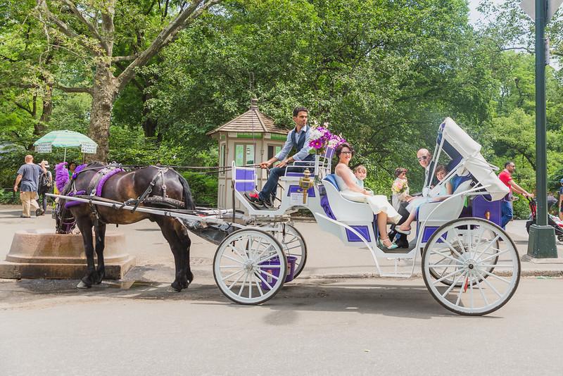 Central Park Wedding - Kellie & Lars-3