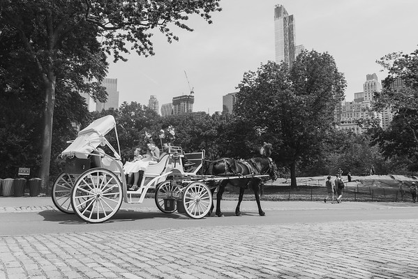 Central Park Wedding - Kellie & Lars-10
