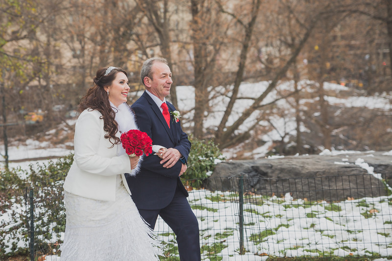 Central Park Wedding - Leah & Rory-33