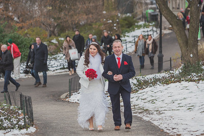 Central Park Wedding - Leah & Rory-9
