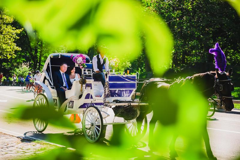 Central Park Wedding - Lisa & Daniel-13