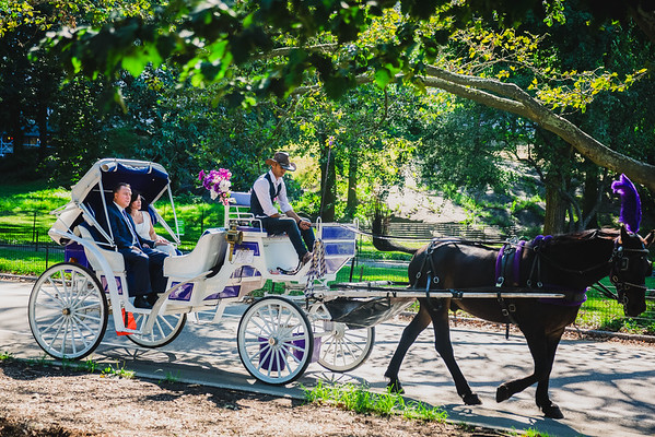 Central Park Wedding - Lisa & Daniel-12