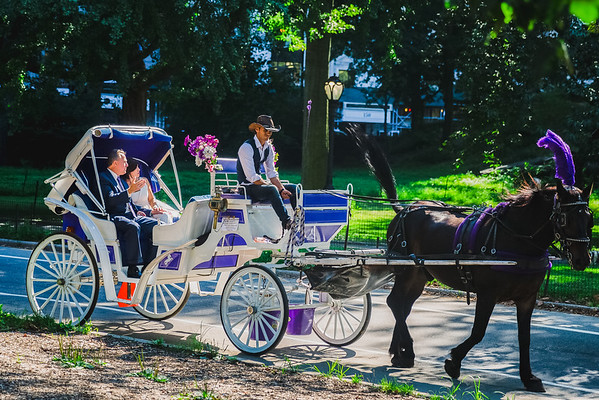 Central Park Wedding - Lisa & Daniel-10