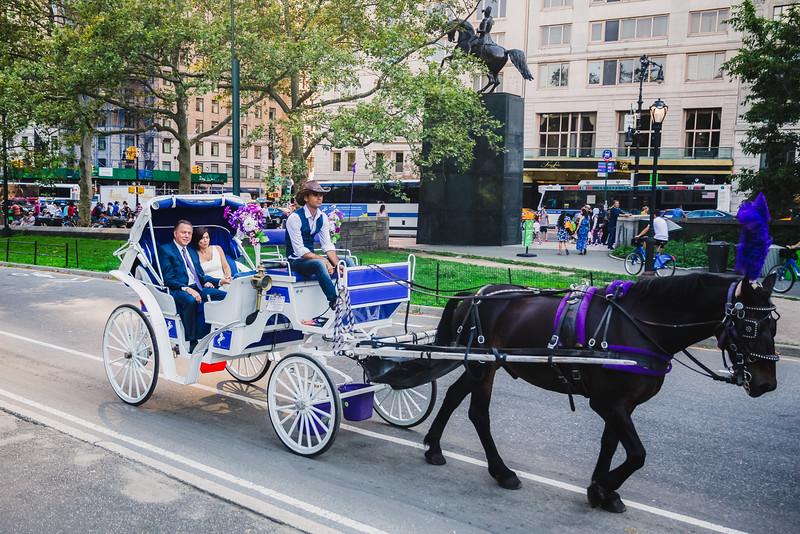 Central Park Wedding - Lisa & Daniel-8