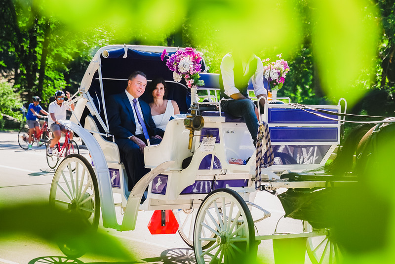 Central Park Wedding - Lisa & Daniel-14