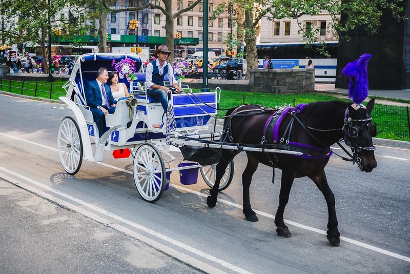 Central Park Wedding - Lisa & Daniel-7