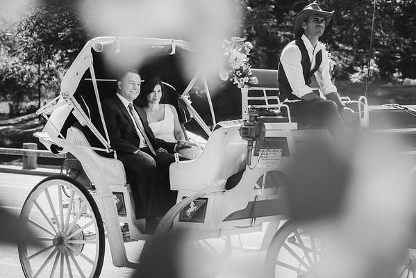Central Park Wedding - Lisa & Daniel-15
