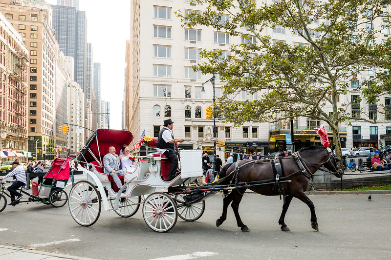 Central Park Wedding - Lubov & Daniel-11