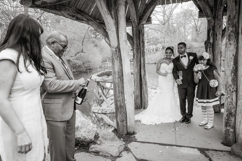 Central Park Wedding - Maha & Kalam-3